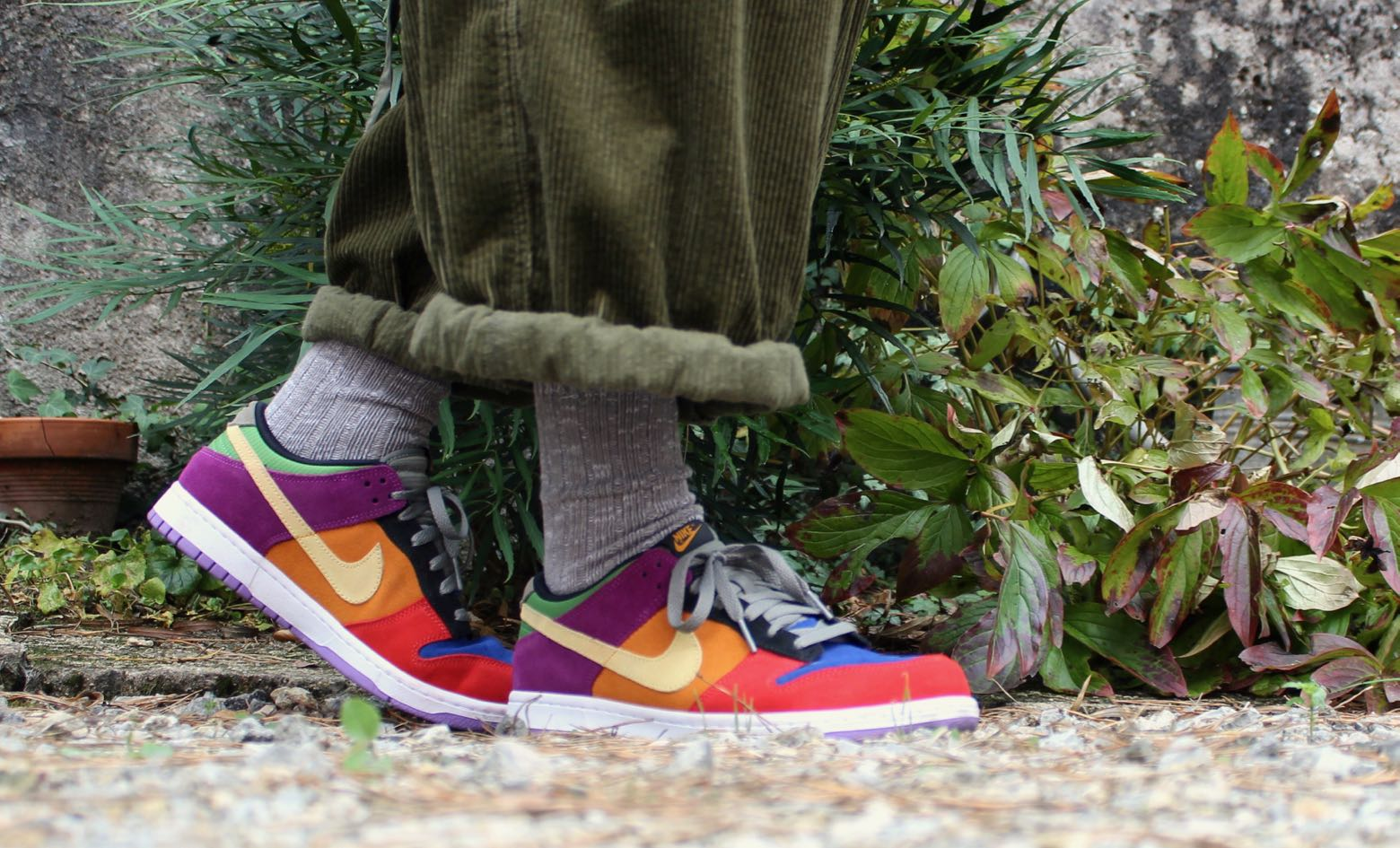 Nike Dunk viotech sneakers rares